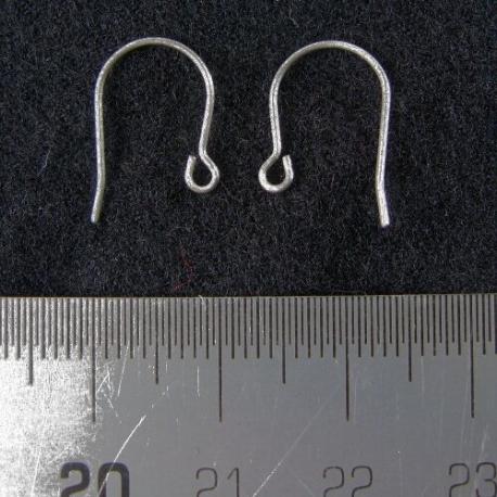 Titanium oorbelhaakjes